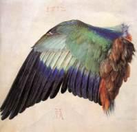 durer, ala, 1512, vienna, Graphische Sammlung Albertina