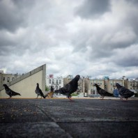 instagram.com/p/7il1YrkwCS/#featherunderground