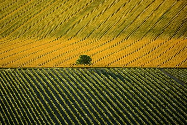 aerial-photography-yann-arthus-bertrand-13