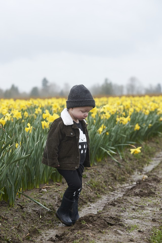 Children in the Daffodils by Quantum Images Inc