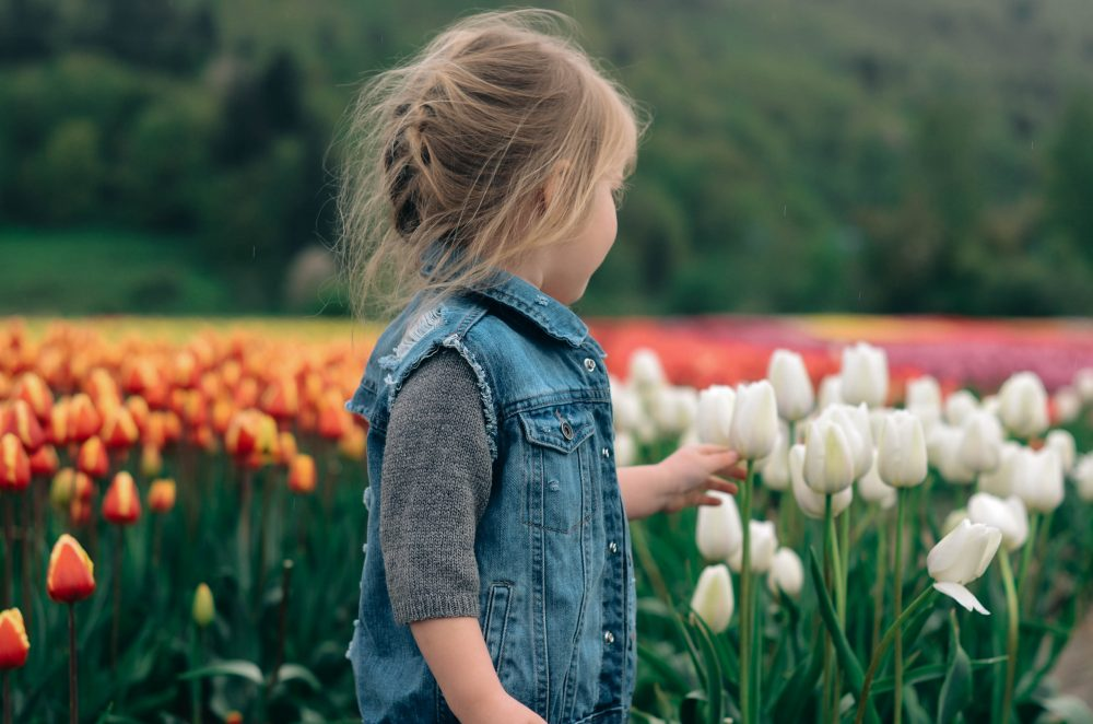 Abbotsford Tulip Festival | Family Photography