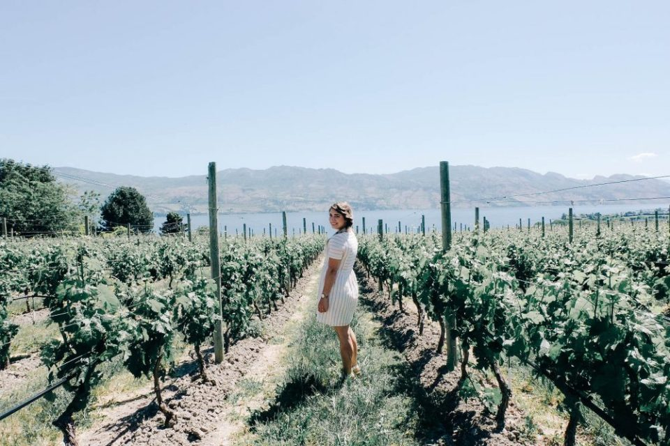 Quails Gate Winery Kelowna Vineyards