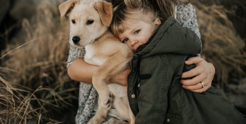 Things to Know Before getting a dog // Labrador Puppy and Little girl