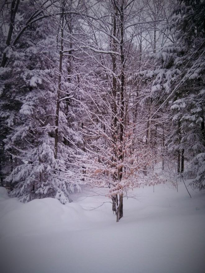 snowy-sunday-windsor-vermont