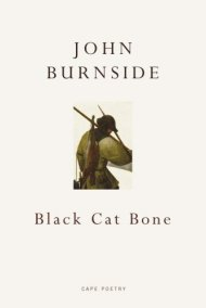 Burnside_Bone