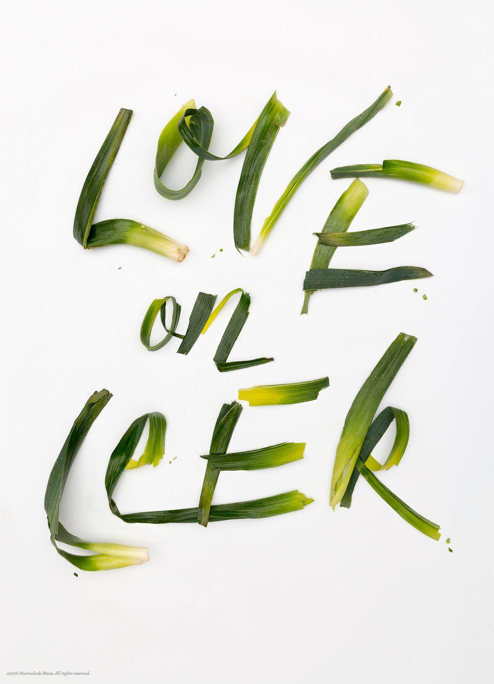 Love-on-Leek-behance
