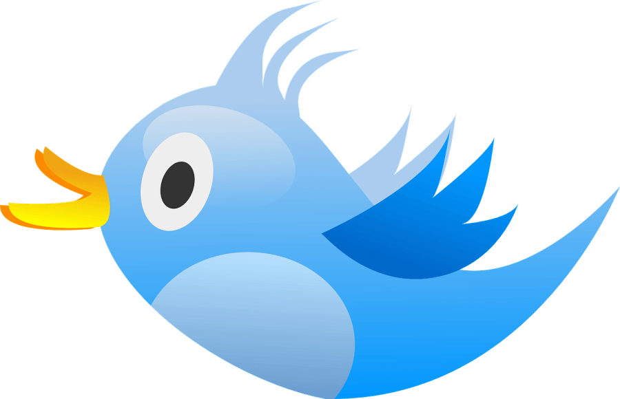bird-309937_1280