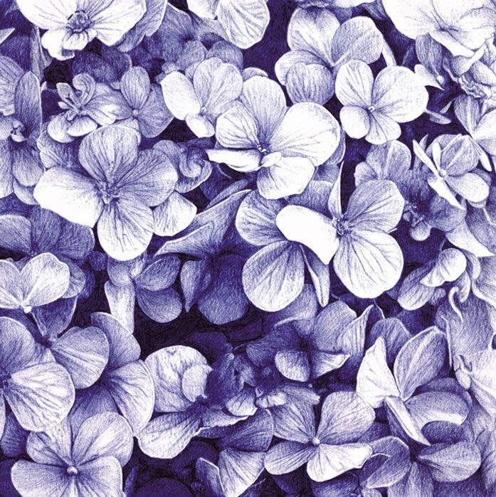 flores paco marmol ilustracion