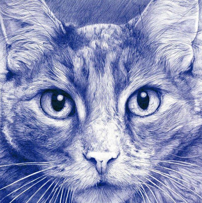 gato paco marmol ilustracion