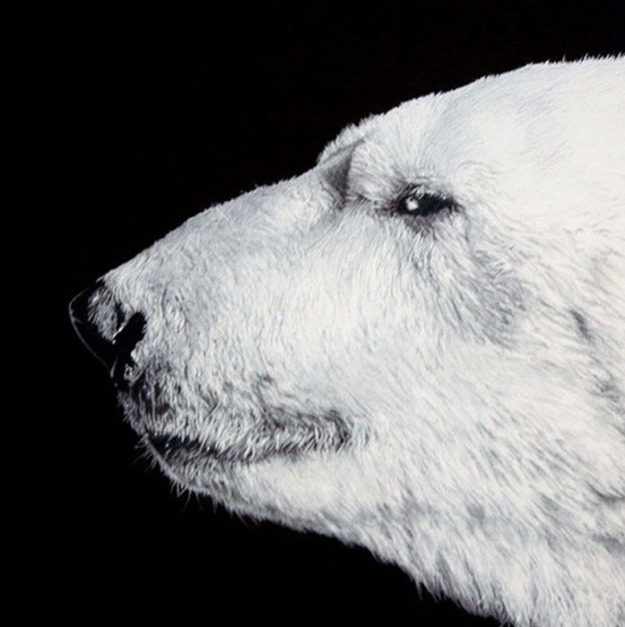 oso paco marmol ilustracion