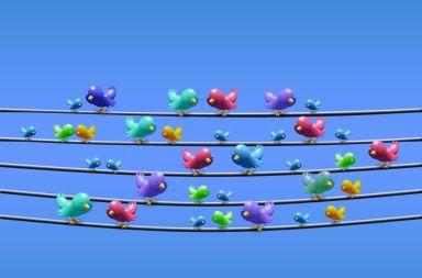 Estudio usuarios Twitter