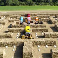 Quiero jugar a este Pac-Man
