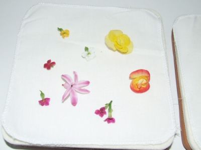 Creativity Inspired ~ Cool Tool: Microwave Flower Press