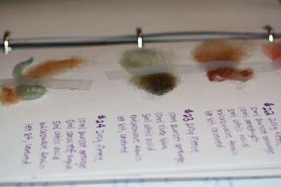 The Dye Binder: Recording Fleece Dyeing