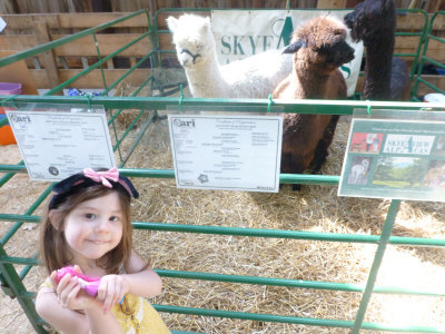 2015 New Hampshire Sheep and Wool Festival