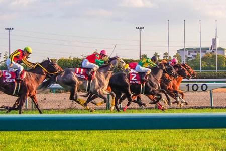 倍率が変動するのは地方競馬等で大きな影響あり