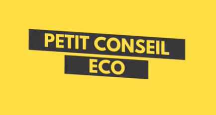 Petit Conseil ECO - sur fond jaune