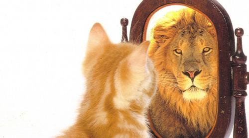 Effet miroir, mon partenaire est mon reflet