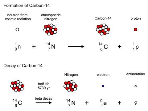 carbon 14 color