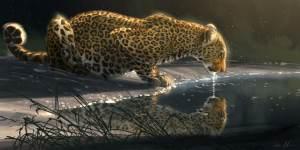 Aaron Blaise Animal Art Gallery