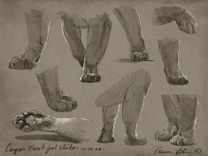 How to Draw Paws