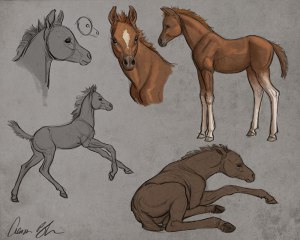 how to draw baby horses