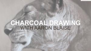 Charcoal Drawing Classes Online