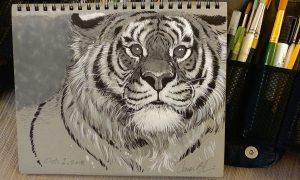pen & ink lesson aaron blaise