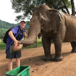 Kole at ENP Asian elephant facts