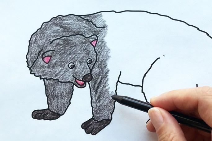Binturong coloring page