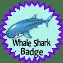 whale shark badge