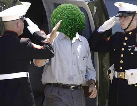 What if George W Bush was a bush?