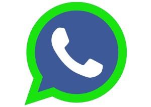 crecer creando whatsapp