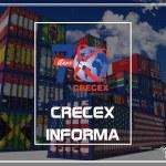 Panorama global del sector importador costarricense para el I trimestre 2021