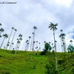 Salento, Valle del Cocora y Filandia. El corazón del eje cafetero colombiano!!!