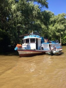 Tigre Delta Grocery Delivery