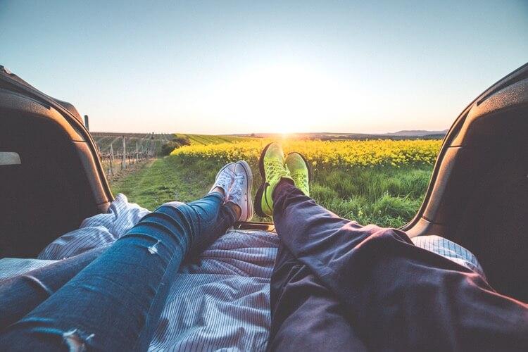 relaxing in a meadow