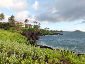 Best Beaches in Maui - Wailea Beach