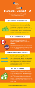 Norbert's Gambit TD Direct Investing Infographic