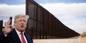 Trump & Wall