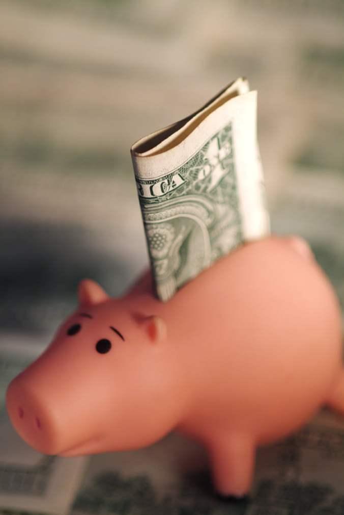 Piggy Bank with Dollar Bill