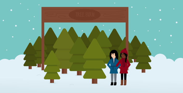 Two women standing in Christmas tree farm