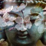 13 Consejos de Buda para cuando la vida no fluye