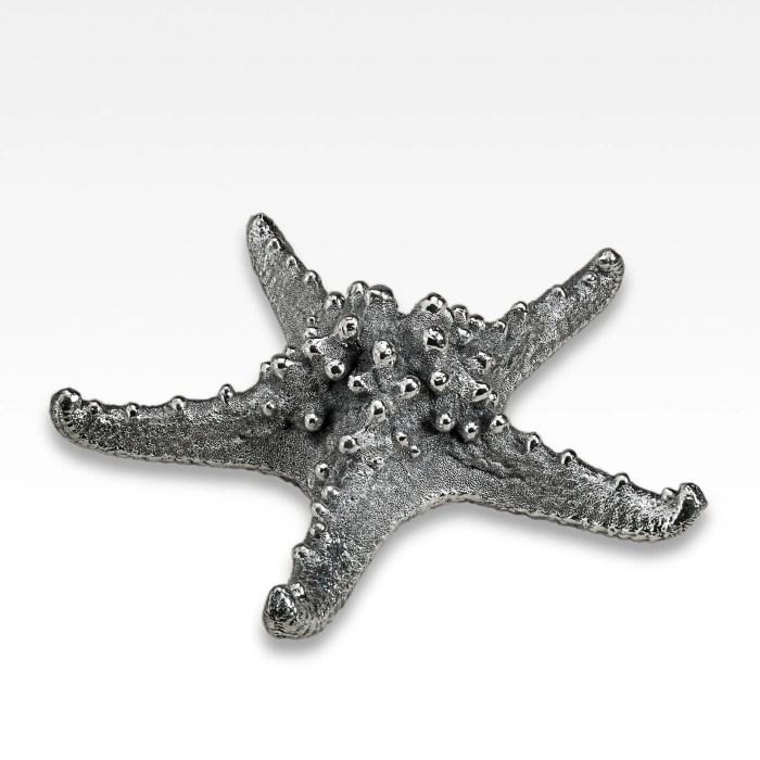 Silvered Starfish