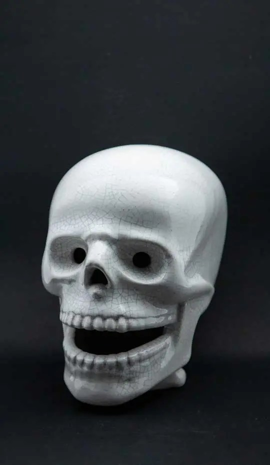 crackle-glaze-ceramic-skull