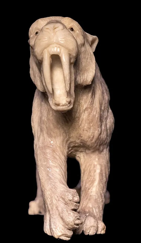 Moose antler Carving of Sabertooth Tiger
