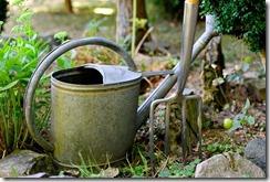 10 outils de jardin indispensables pour débuter