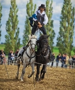 spectacles-equestres-picardie