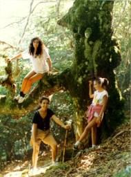 Aguasalio pico, haya, rio Achín