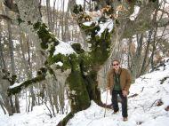Crémenes, hayas en la Sierra del Castillo 28 enero 2013 3958